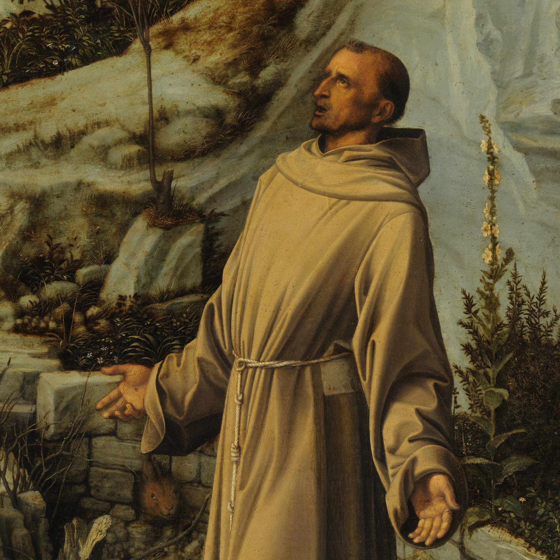 St. Francis, Nature, and Modern Science